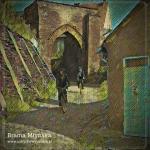 Brama Młyńska czyli zdjęcie w kolejnym wydaniu
